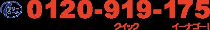 0120-919-175